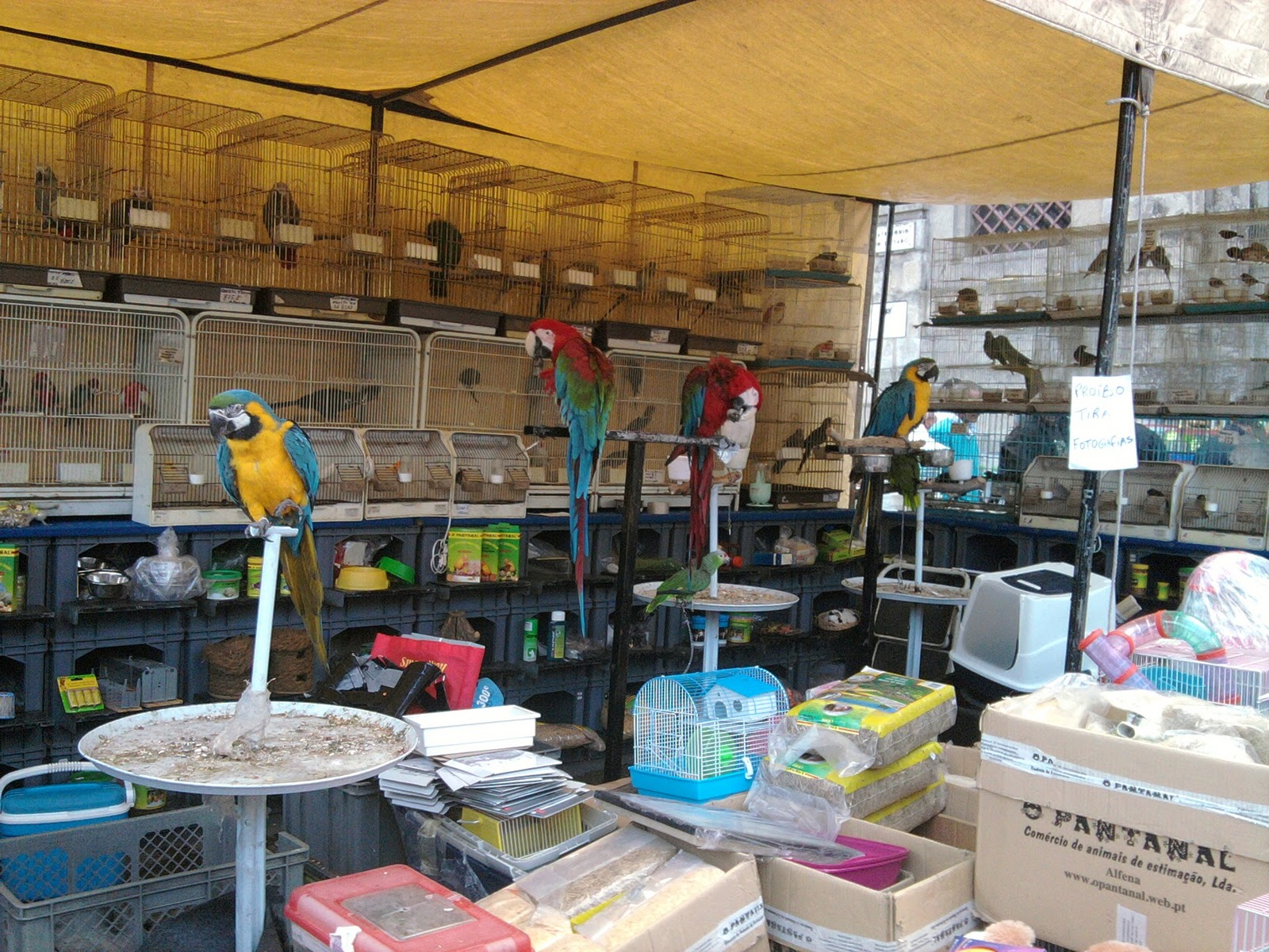 Street Markets Berl N Porto Florencia El Cairo Madrid Ibiza  ~ Mercadillo De Segunda Mano Madrid