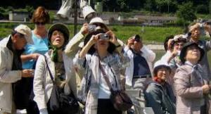 turistas japones